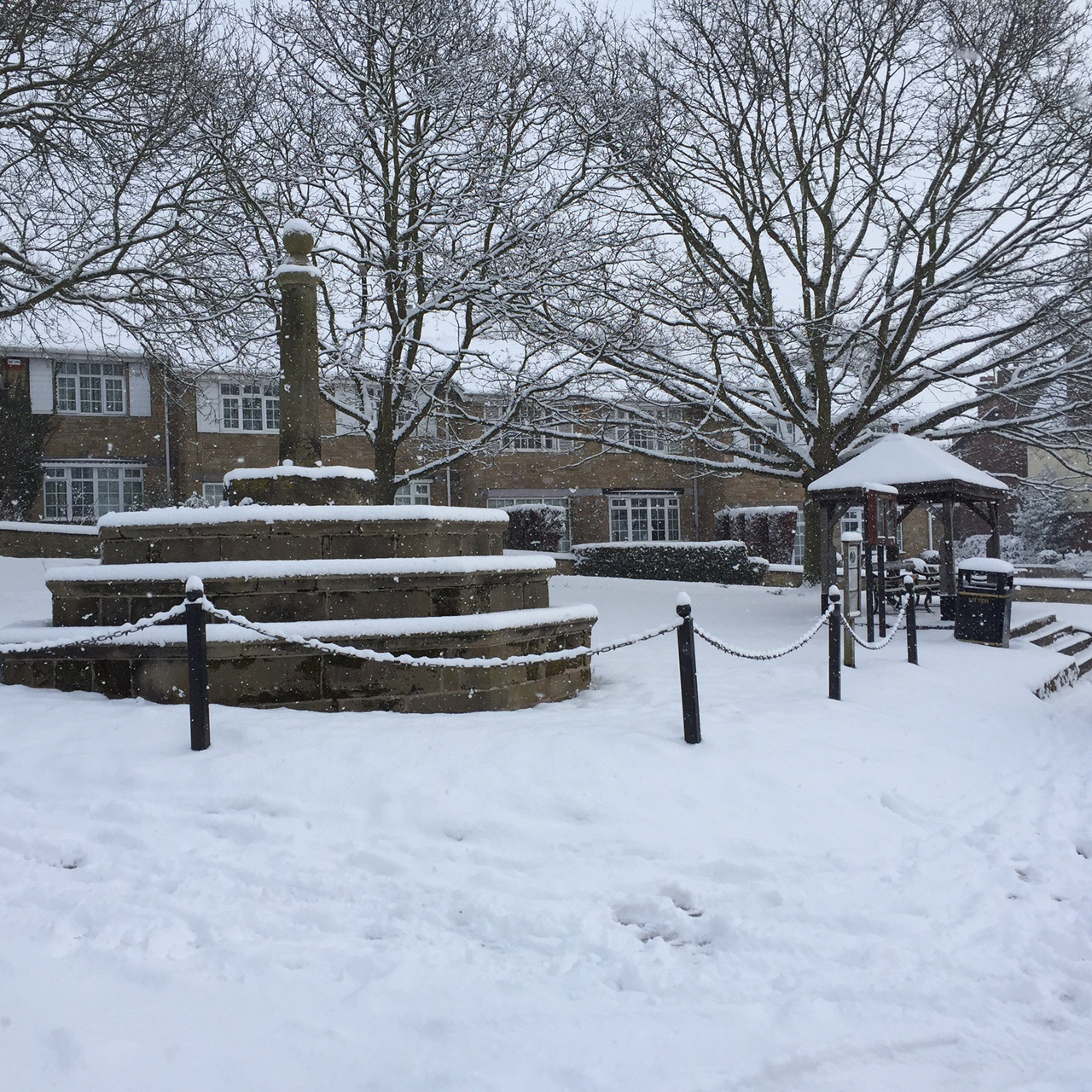 village green in the snow feb 2018